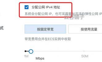 阿里云服务器的公网ip是怎么来的?