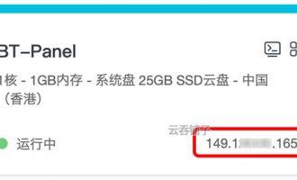 阿里云轻量应用服务器有公网IP吗?