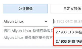 Aliyun Linux镜像系统2.1903 LTS 64位和快速启动版区别选择方法